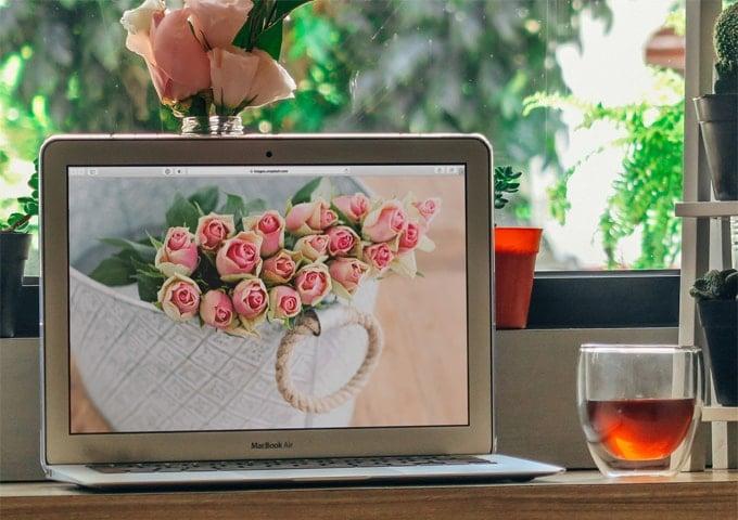 Best macbook air sleeves and cases
